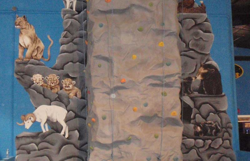 Rock Climbing Wall - Funopolis Family Fun Center